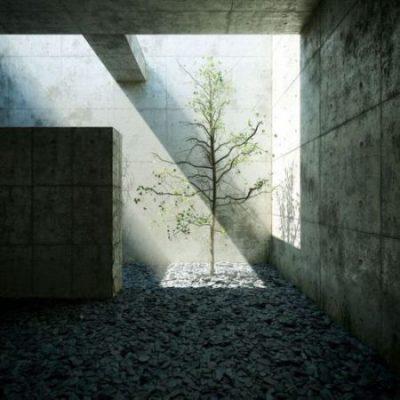 Phong cách thiết kế tối giản và nghệ thuật ánh sáng
